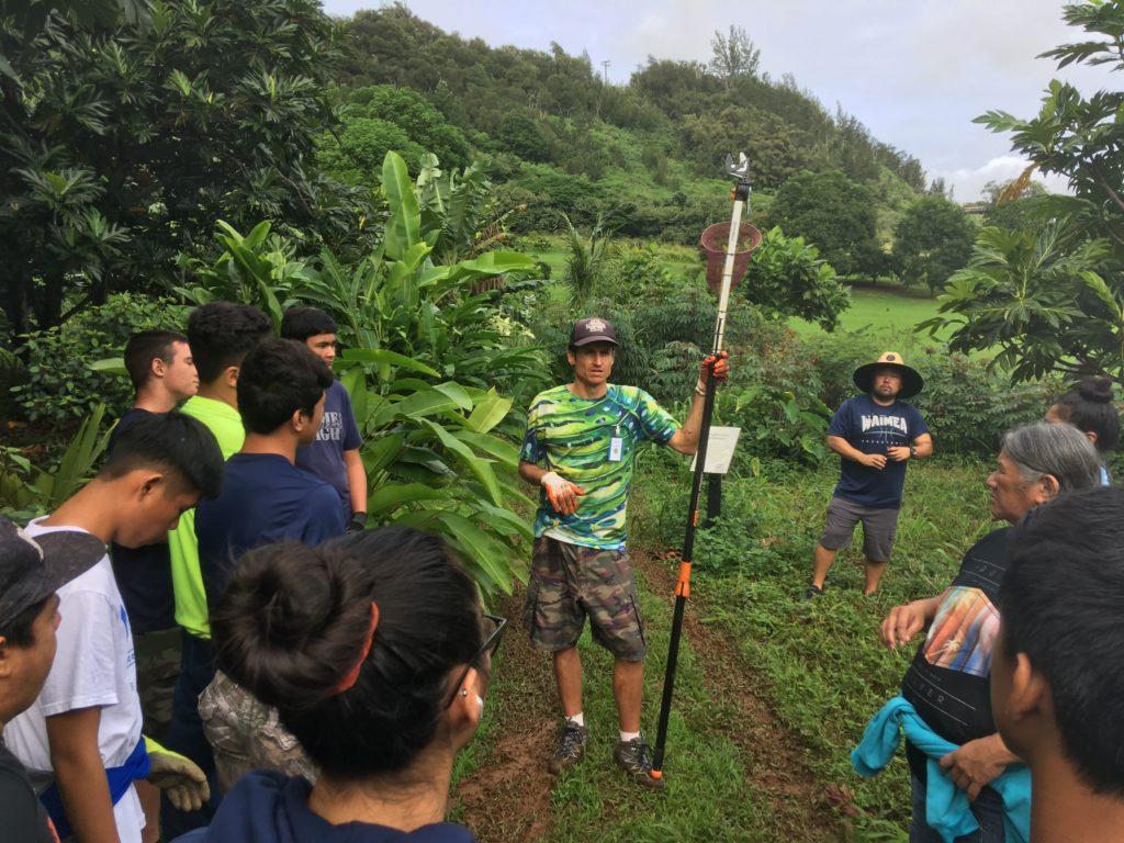 National Volunteer Week spotlight David Hubbard giving a tutorial on harvesting breadfruit.