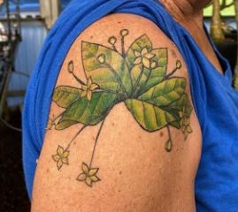 Tattoo of Brighamia insignis on the arm of National Volunteer Week spotlight, Billie Richardson.