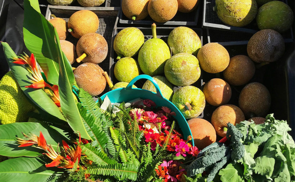 harvested breadfruit, vegetables and flowers