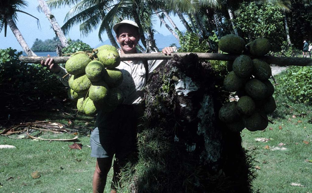 Diane Ragone poses with harvested breadfruit in the Caroline Islands, Micronesia. Breadfruit is a staple food crop for many people in the Pacific and may be key in the fight against food insecurity worldwide.